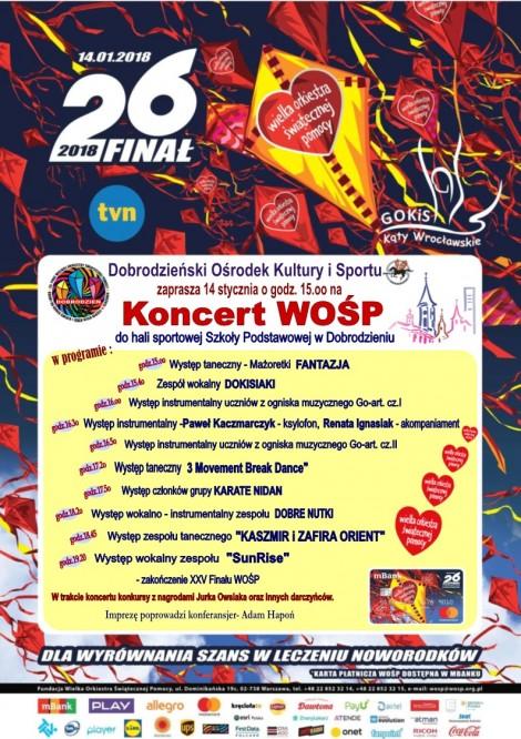 26-Koncert-WOŚP-w-Dobrodzieniu..-e1515501834634.jpeg