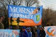 Galeria morsy 2015